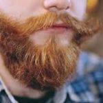 Kan man farve sit skæg?