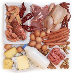 Animalske fødevare