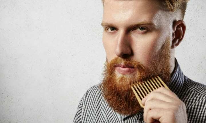 skægbørste eller skægkam