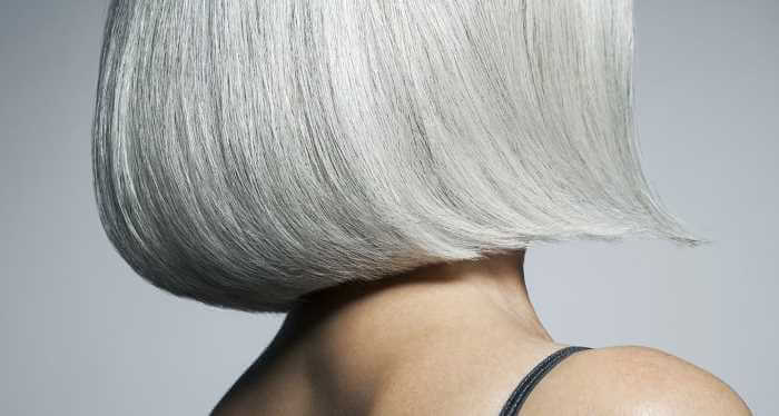 silver shampoo og gråt hår